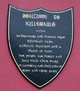 Ardagh House Sign